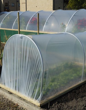 Small Polytunnels