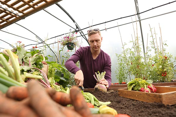 The Complete Companion Planting Guide | First Tunnels